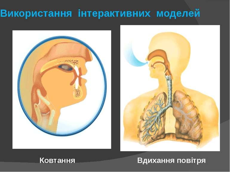 Використання інтерактивних моделей Вдихання повітря Ковтання
