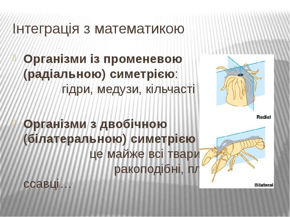 Організми із променевою (радіальною) симетрією: гідри, медузи, кільчасті черв...