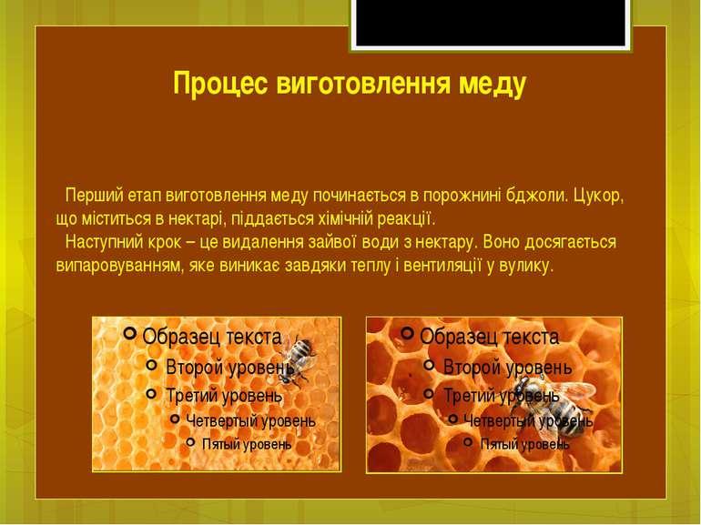 Перший етап виготовлення меду починається в порожнині бджоли. Цукор, що місти...