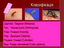 Класифікація Царство: Тварини (Metazoa) Тип: Членистоногі (Arthropoda) Клас: ...