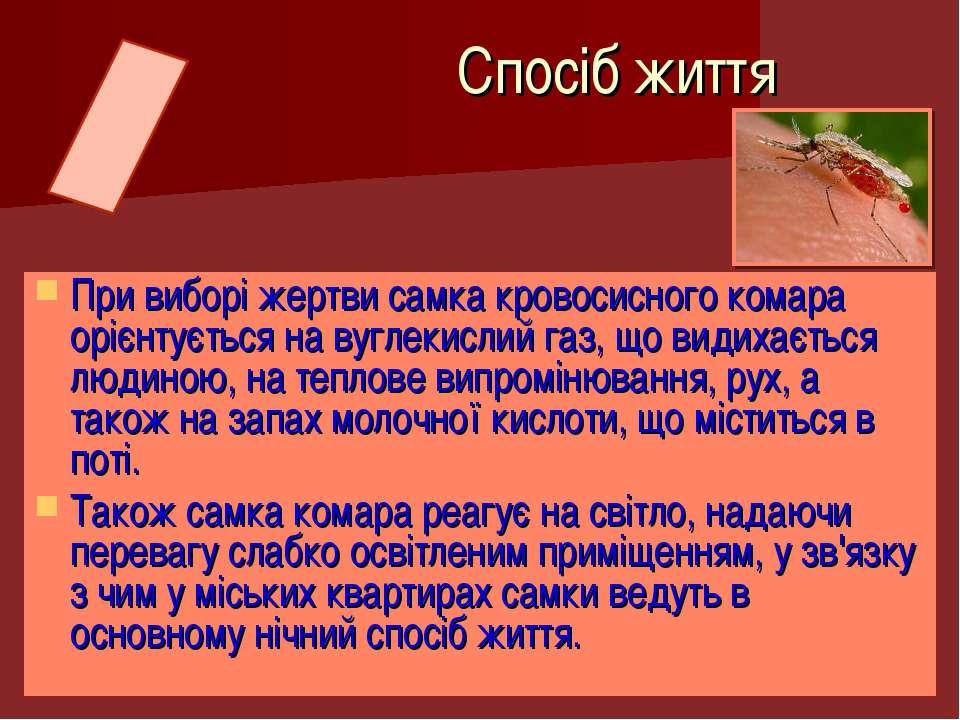 При виборі жертви самка кровосисного комара орієнтується на вуглекислий газ, ...