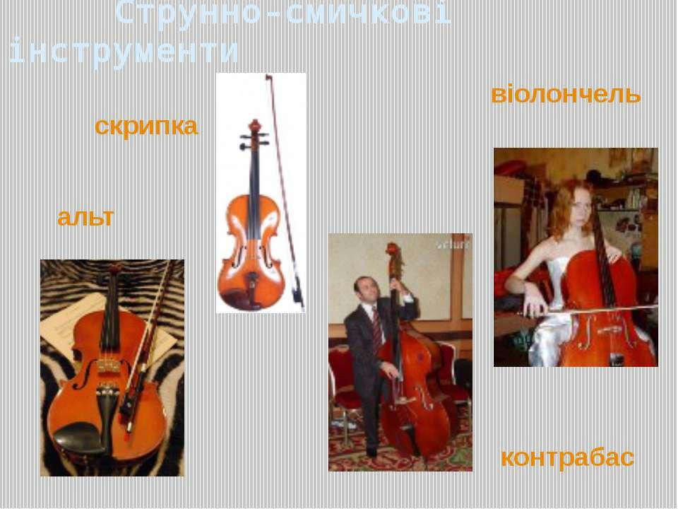 Струнно-смичкові інструменти контрабас альт віолончель скрипка