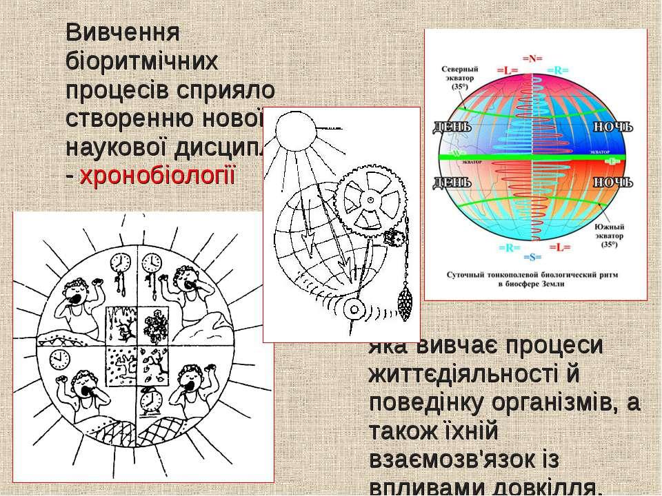 Вивчення біоритмічних процесів сприяло створенню нової наукової дисципліни - ...