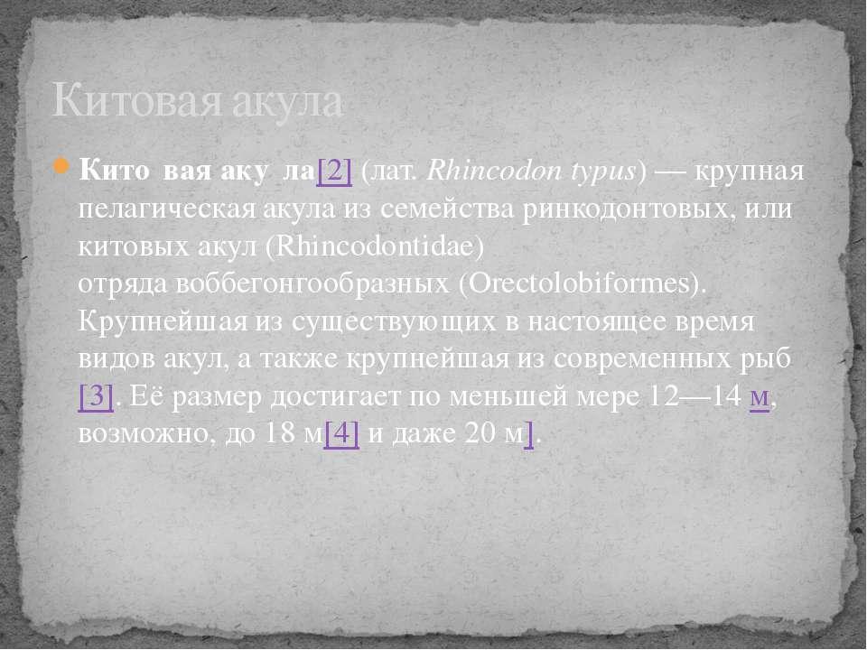 Кито вая аку ла[2](лат.Rhincodon typus) — крупная пелагическаяакулаиз сем...