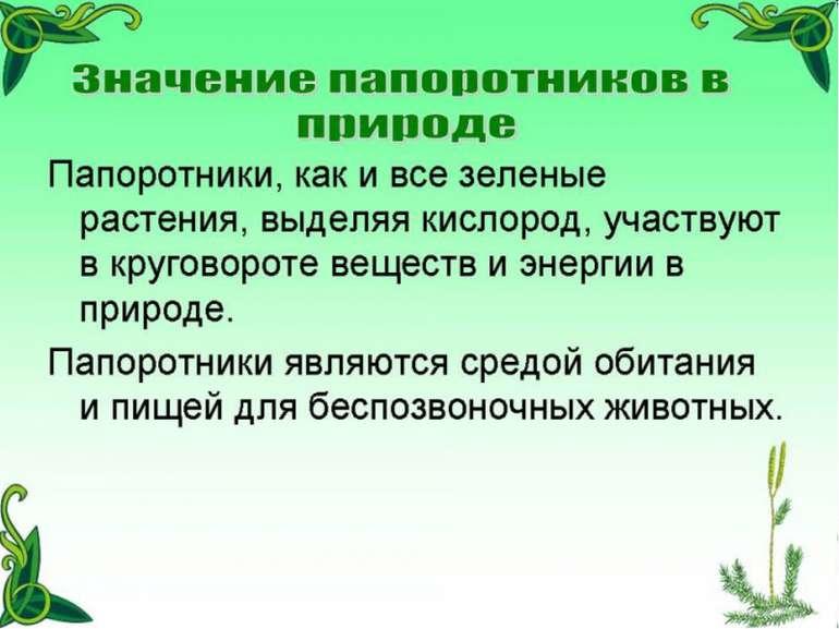 ГБОУ СОШ №1020