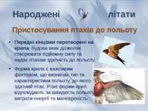 Передні кінцівки перетворені на крила, будова яких дозволяє створювати підйом...