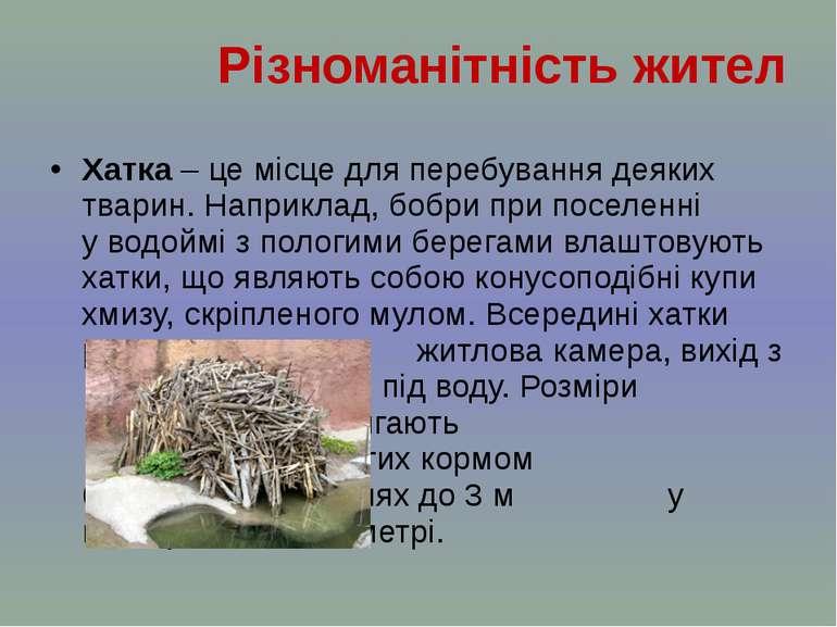 Хатка – це місце для перебування деяких тварин. Наприклад, бобри припоселенн...