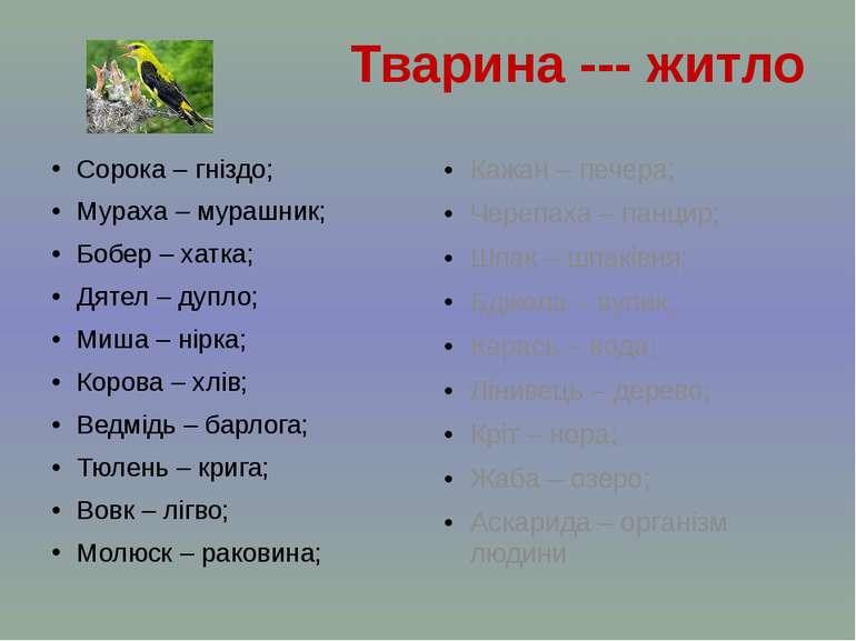 Сорока – гніздо; Мураха – мурашник; Бобер – хатка; Дятел – дупло; Миша – нірк...