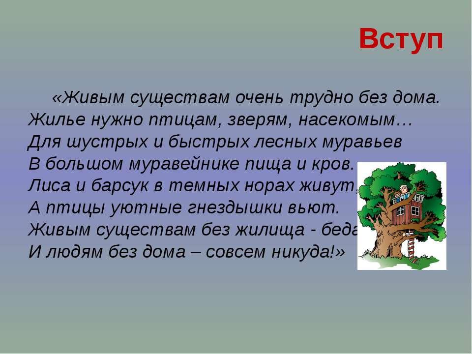 «Живым существам очень трудно без дома. Жилье нужно птицам, зверям, насекомым...