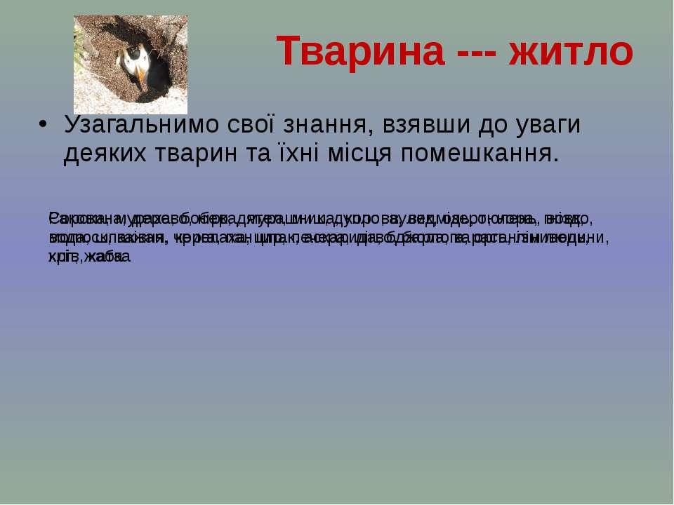 Узагальнимо свої знання, взявши до уваги деяких тварин та їхні місця помешкан...