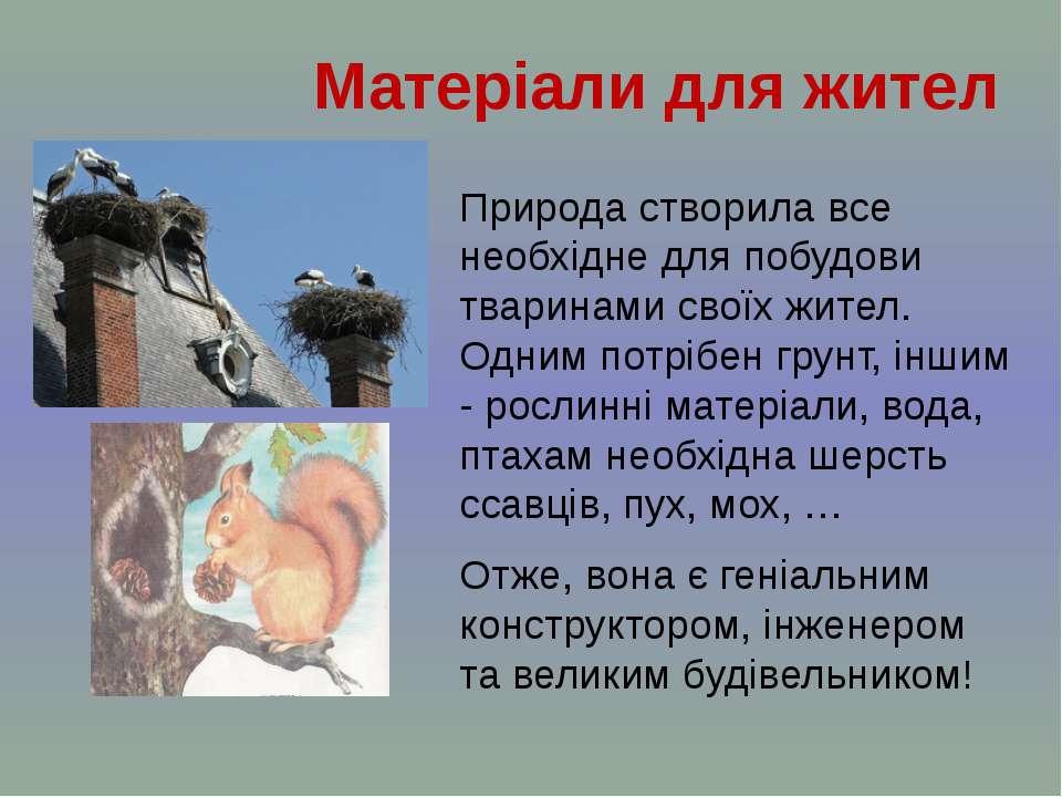 Природа створила все необхідне для побудови тваринами своїх жител. Одним потр...