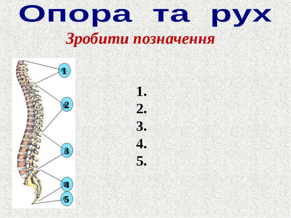 Зробити позначення 1. 2. 3. 4. 5. 1 2 3 4 5
