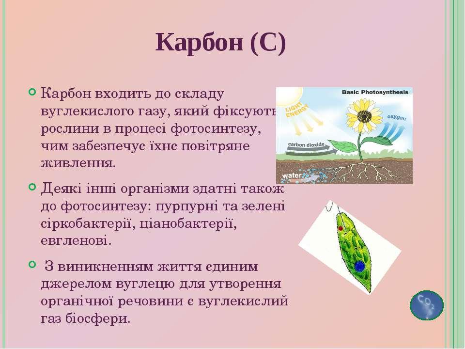 Карбон входить до складу вуглекислого газу, який фіксують рослини в процесі ф...