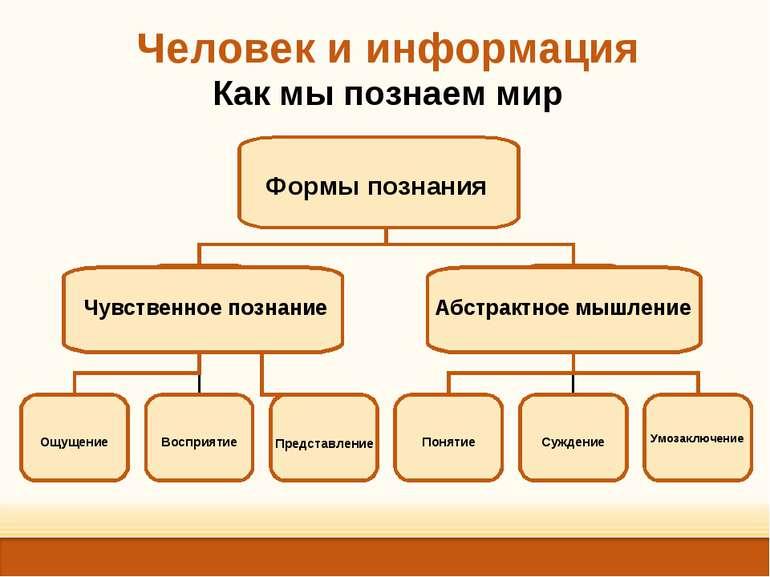 Представление Умозаключение Формы познания Чувственное познание Абстрактное м...