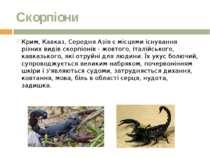 Скорпіони Крим, Кавказ, Середня Азія є місцями існування різних видів скорпіо...