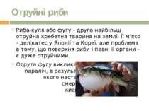 Отруйні риби Риба-куля або фугу - друга найбільш отруйна хребетна тварина на ...