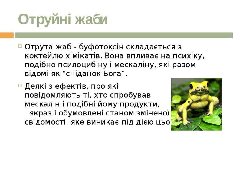 Отруйні жаби Отрута жаб - буфотоксін складається з коктейлю хімікатів.Вона в...