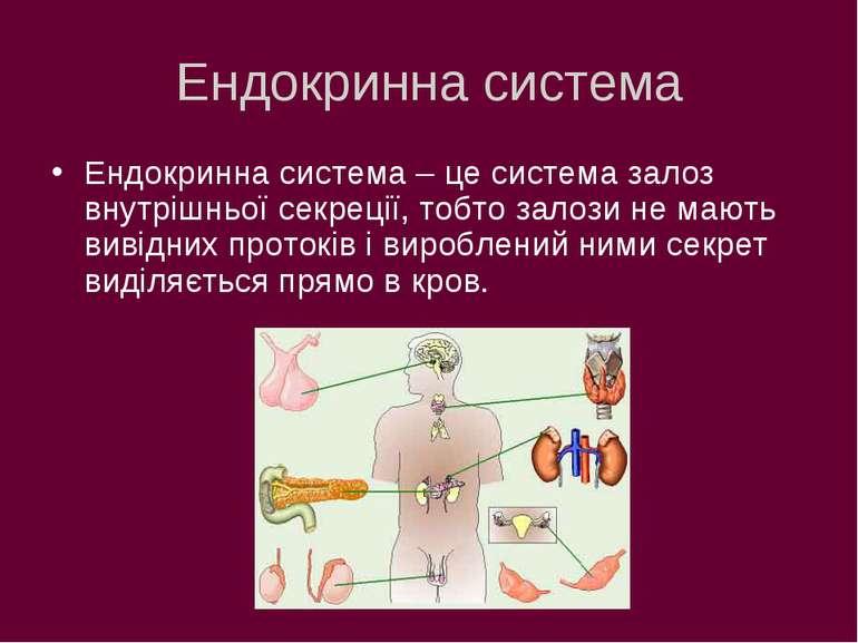 Ендокринна система Ендокринна система – це система залоз внутрішньої секреції...
