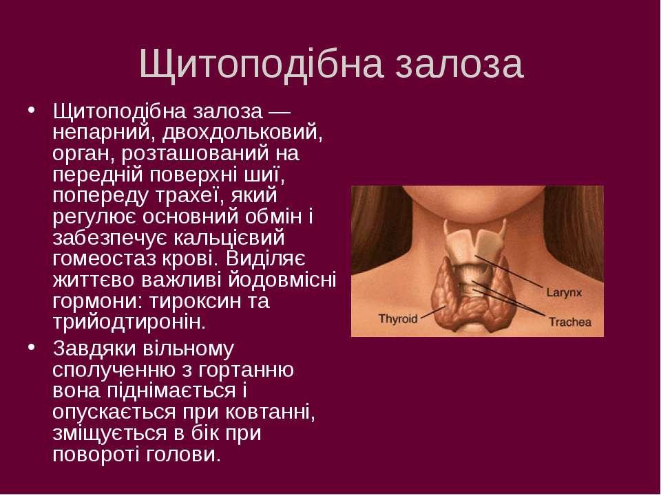 Щитоподібна залоза Щитоподібна залоза — непарний, двохдольковий, орган, розта...