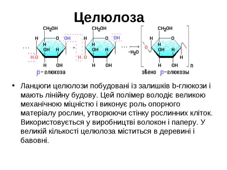 Целюлоза Ланцюги целюлози побудовані із залишків b-глюкози і мають лінійну бу...