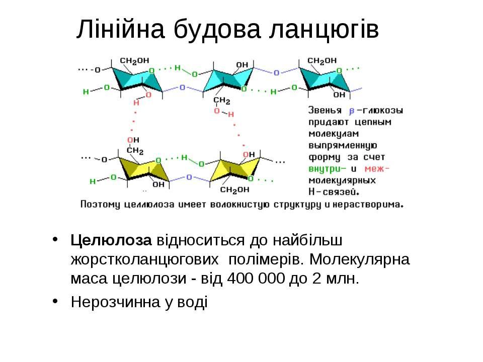 Лінійна будова ланцюгів Целюлоза відноситься до найбільш жорстколанцюгових по...