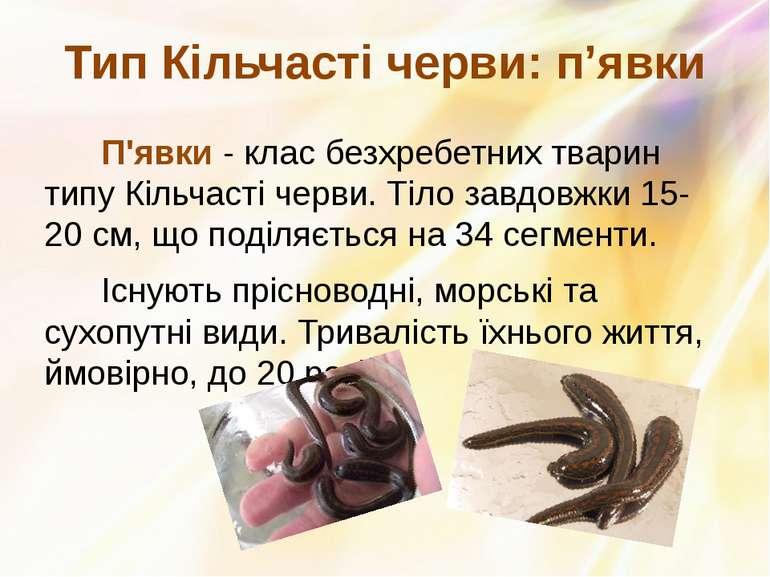 П'явки- клас безхребетних тварин типу Кільчасті черви. Тіло завдовжки 15-20 ...