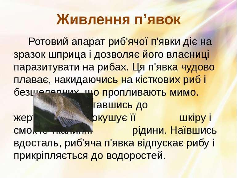Ротовий апарат риб'ячої п'явки діє на зразок шприца і дозволяє його власниці ...