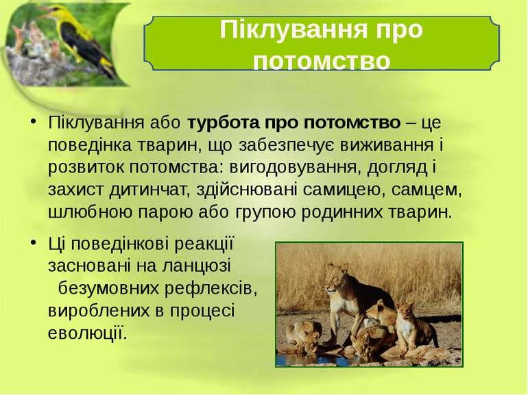 Піклування або турбота про потомство – це поведінка тварин, що забезпечує виж...