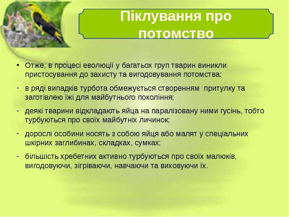 Отже, в процесі еволюції у багатьох груп тварин виникли пристосування до захи...