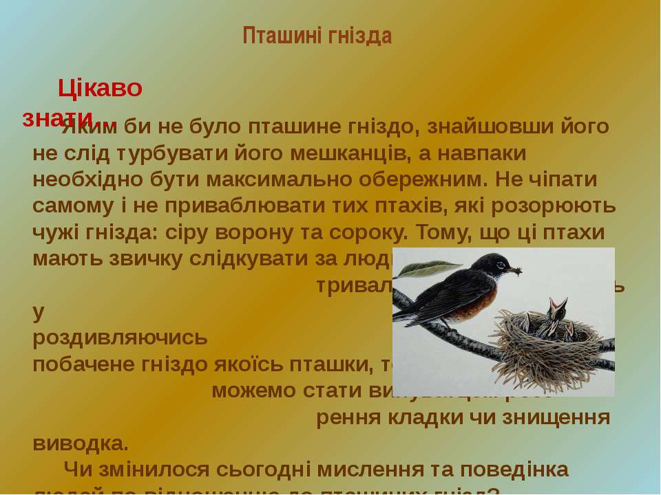 Пташині гнізда Яким би не було пташине гніздо, знайшовши його не слід турбува...