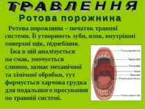 Ротова порожнина – початок травної системи. Її утворюють зуби, язик, внутрішн...