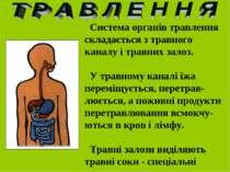 Система органів травлення складається з травного каналу і травних залоз. У тр...