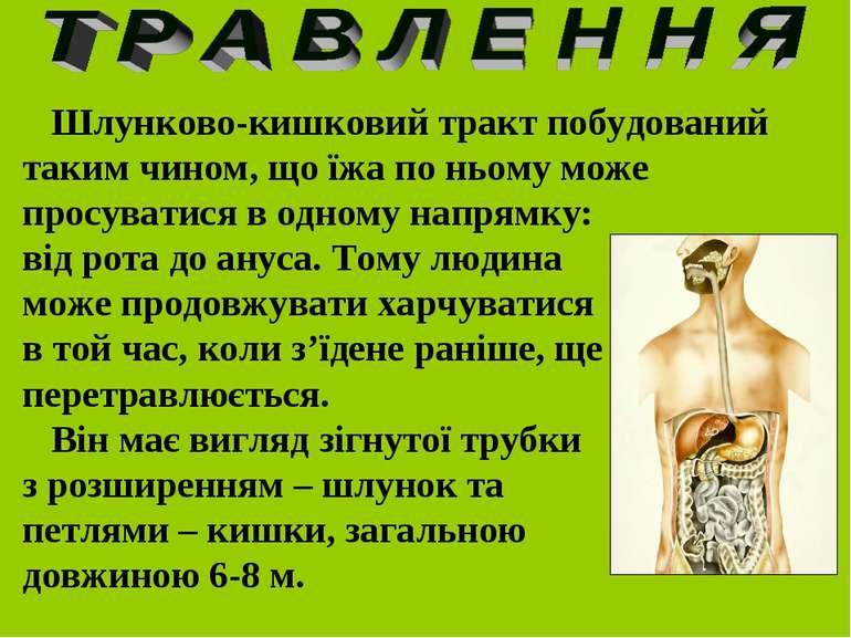 Шлунково-кишковий тракт побудований таким чином, що їжа по ньому може просува...