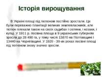 В Україні площі під тютюном постійно зростали. Це були переважно плантації ве...
