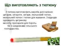 З тютюну виготовляють вироби для паління: цигарки, сигарети, сиґари, люлькови...