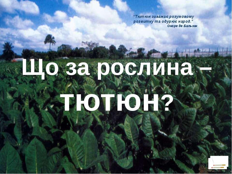 """""""Тютюн заважає розумовому розвитку та одурює народ."""" Оноре де Бальзак Що за р..."""