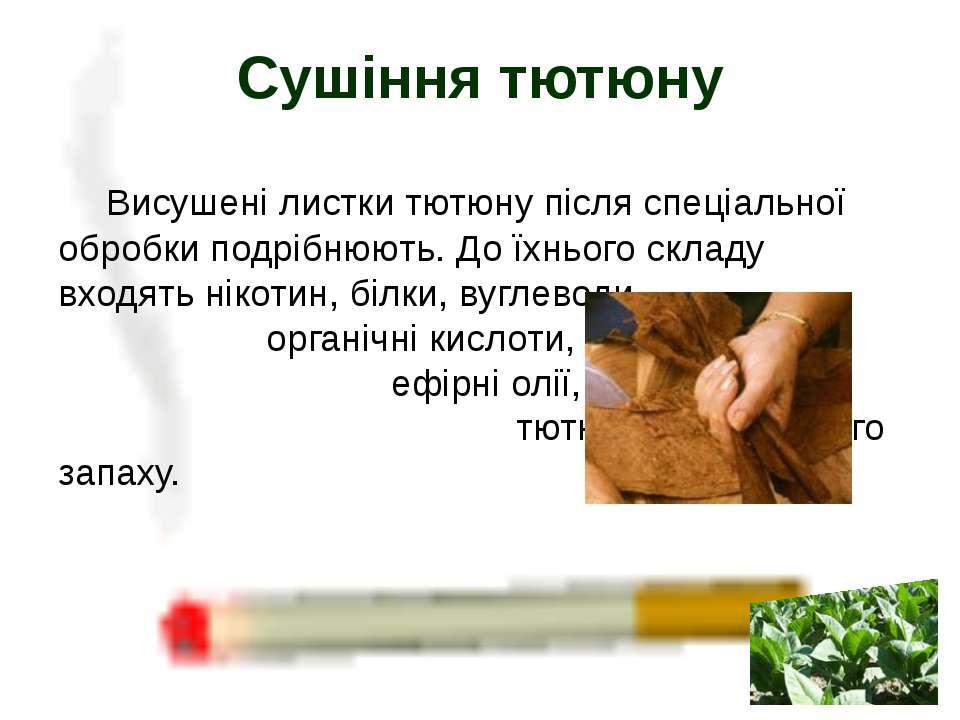 Висушені листки тютюну після спеціальної обробки подрібнюють. До їхнього скла...