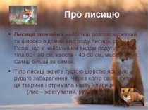 Лисиця звичайнанайбільш розповсюджений та широко відомийвидроду лисиць, ро...