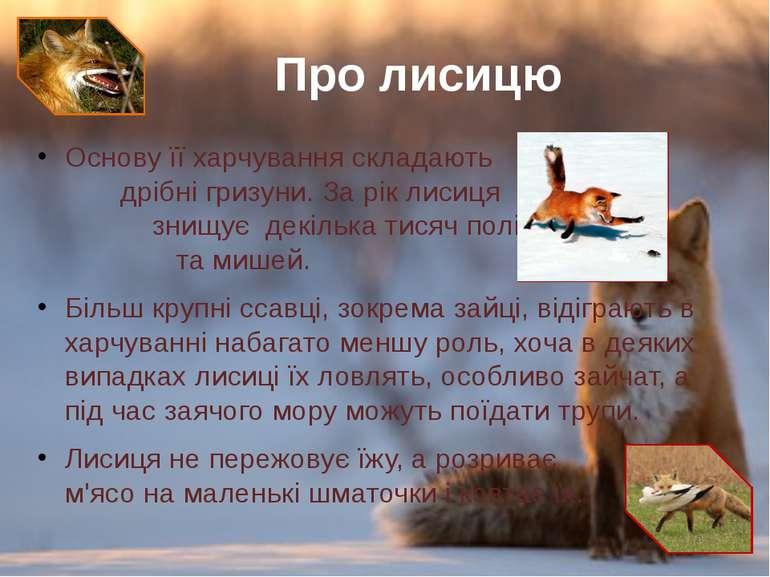 Основу її харчування складають дрібні гризуни. За рік лисиця знищує декілька ...