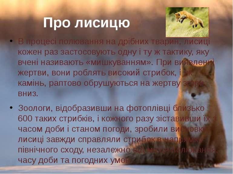 Впроцесі полювання на дрібних тварин, лисиці коженраззастосовуютьоднуі т...
