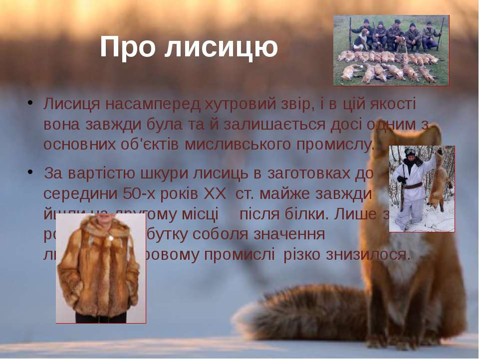Лисицянасампередхутровий звір,івцій якості воназавждибулата й залишає...