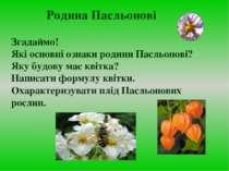 Згадаймо! Які основні ознаки родини Пасльонові? Яку будову має квітка? Написа...