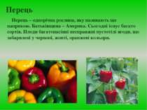 Перець Перець – однорічна рослина, яку називають ще паприкою. Батьківщина – А...
