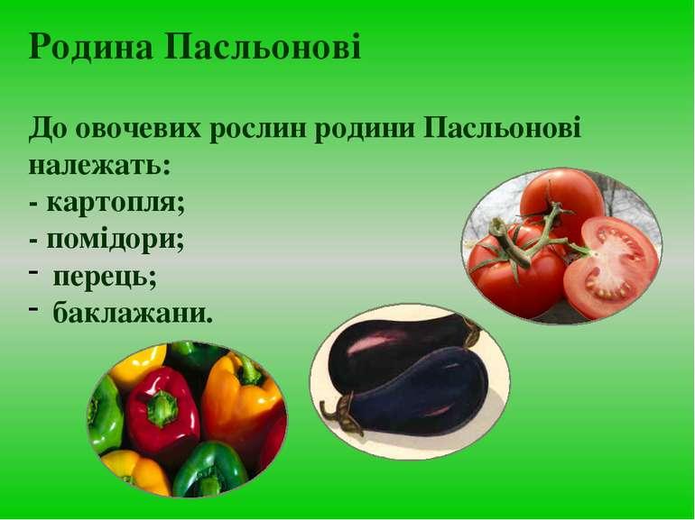 До овочевих рослин родини Пасльонові належать: - картопля; - помідори; перець...