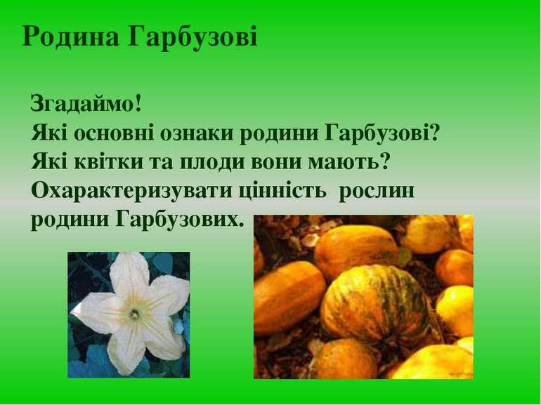 Згадаймо! Які основні ознаки родини Гарбузові? Які квітки та плоди вони мають...