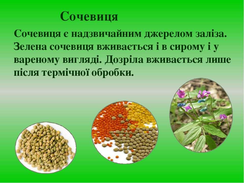Сочевиця Сочевиця є надзвичайним джерелом заліза. Зелена сочевиця вживається ...