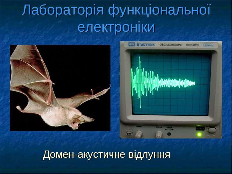 Лабораторія функціональної електроніки Домен-акустичне відлуння