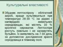 Культуральні властивості Збудник лептоспірозу - облігатний аероб, краще культ...