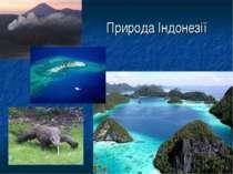 Природа Індонезії
