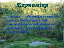 Економіка Індонезія — індустріально-аграрна країна, з найбільшим в Азії плант...
